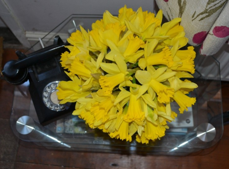daff arrangement